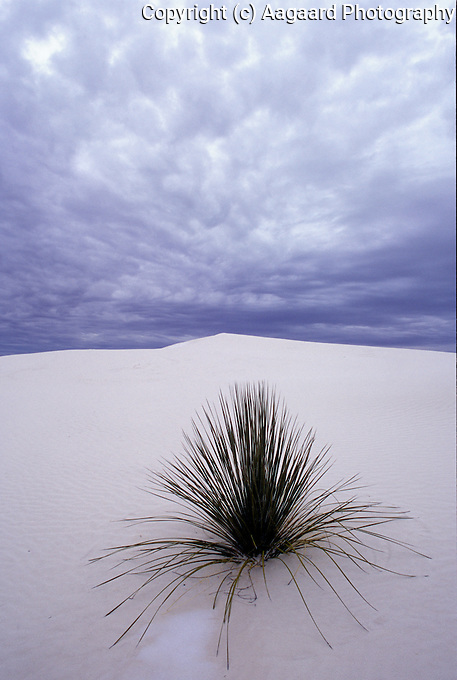 Winter clouds over White Sands National Monument
