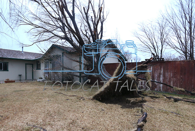 Dozens of homes with roof, fence and tree damage are seen in the Ranchos area of  Gardnerville, Nev., on Friday, Feb. 6, 2015. A powerful wind and rain storm will continue to move through the area over the next few days. <br /> Photo by Cathleen Allison