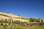 Israel, Jerusalem, Trmple Mount's blocked up Glolden Gate or the Gate of Mercy overlooking Kidron valley