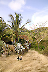 Caribbee Inn, Carriacou, Grenada 4/05