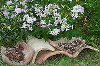 Dachziegel, Dachziegeln, alte Ziegel dienen mit ihren Hohlräumen als Unterschlupf, Lebensraum, Versteckmöglichkeit für Tiere im Garten, Tierfreundlicher Garten, Naturgarten, Roof tiles, serve with their cavities as shelter, habitat for animals in the garden, natural garden
