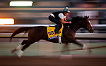 OCT 27: Yoshida works in preparation for the Breeders Cup Classic at Santa Anita Park in Arcadia, California on Oct 27, 2019. Evers/Eclipse Sportswire/Breeders' Cup