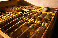 Bottles of white wine being aged in the cellar. Bodega Vinos Finos H Stagnari Winery, La Puebla, La Paz, Canelones, Montevideo, Uruguay, South America