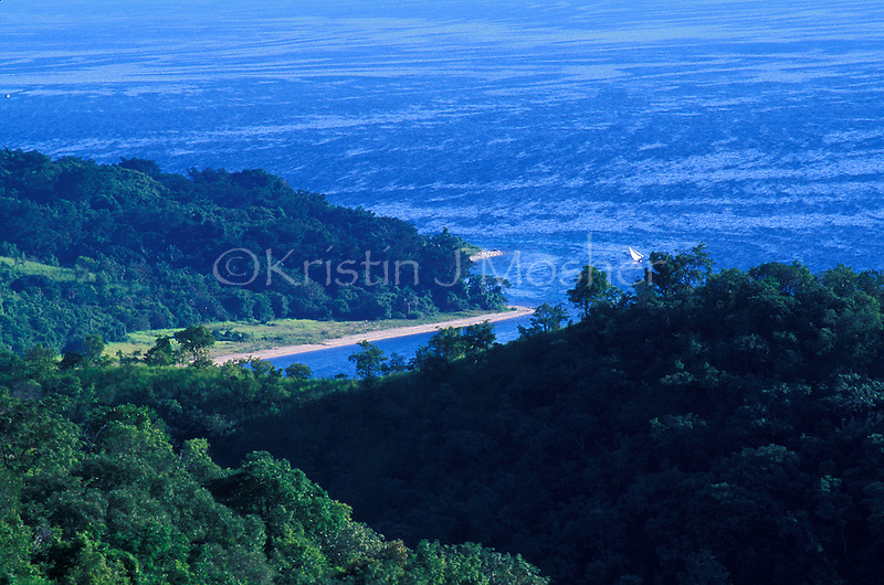 View of forest valley, slopes and Lake Tanganyika.Gombe National Park, Tanzania