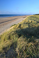 Beach and dune system at Holme Nature Reserve on the Norfolk coast
