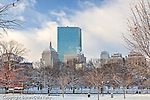 Fresh snow and the Back Bay skyline, Boston, MA