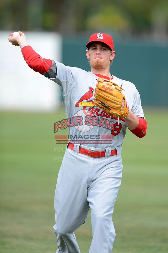 St. Louis Cardinals shortstop Ryan Jackson #8 warms up before a Spring Training game against the Houston Astros at Osceola County Stadium on March 1, 2013 in Kissimmee, Florida.  The game ended in a tie at 8-8.  (Mike Janes/Four Seam Images)