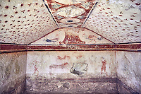 "Underground Etruscan tomb Known as ""Tomba dei Fiorellini"" A single chamber with double sloping ceiling decorated with red circles and three petalled flowers. In the tympanium on the back wall is a painted pillar and two cockerals, a couple are depicted banquetting bellow. 475-450 BC. Excavated 1960 , Etruscan Necropolis of Monterozzi, Monte del Calvario, Tarquinia, Italy. A UNESCO World Heritage Site."