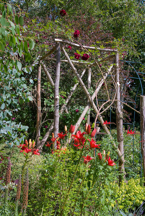 Cottage Garden Trellis With Climbing Red Roses Rosa And Lilies Lilium,  Vertical Gardening, Tall