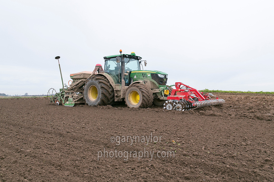Drilling winter wheat following sugar beet - Lincolnshire, December