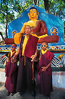 Tibetan Lama and his twin grandsons   <br /> Swayambunath, Kathmandu, Nepal 1996.<br /> Lobsang Thenba, a Tibetan lama living in exile, stands proudly with his two young grandsons at Swayambunath stupa in Kathmandu, Nepal. These twins have been trained to be monks since birth, and one has recently been recognized as a high reincarnated lama or Rinpoche.