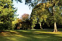 Autumn colours, MacRosty Park, Crieff, Perthshire