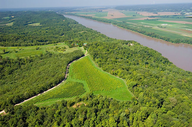 Vineyards of Stone Hill Winery perch high above Missouri river southwest of St. Louis