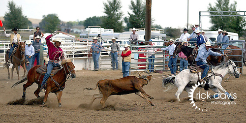 Colorado Pro Rodeo Association cowboys compete in Team Roping