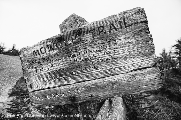 Mt Cardigan State Park - Mowglis Trail on the summit of Firescrew Mountain in Orange, New Hampshire USA.
