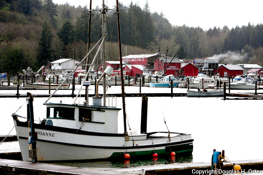 Jessie's Ilwaco Fish Co. buildings shine through rain over Ilwaco Harbor at the mouth of the Columbia River, Washington.