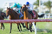 HALLANDALE BEACH, FL-FEBRUARY 10: Heart to Heart #1, ridden by Julien Leparoux, wins the Gulfstream Park Turf Handicap at Gulfstream Park Race Track on February 10, 2018 in Hallandale Beach, Florida. (Photo by Kaz Ishida/Eclipse Sportswire/Getty Images)