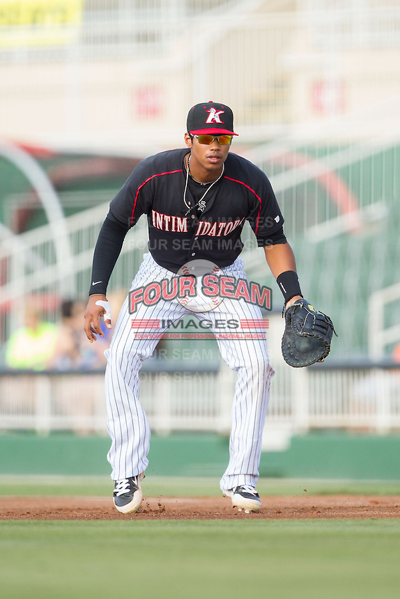 Kannapolis Intimidators first baseman Tyler Williams (6) on defense against the Hagerstown Suns at CMC-Northeast Stadium on June 1, 2014 in Kannapolis, North Carolina.  The Suns defeated the Intimidators 11-5 in game two of a double-header.  (Brian Westerholt/Four Seam Images)