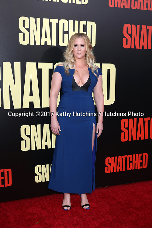"""LOS ANGELES - MAY 10:  Amy Schumer at the """"Snatched"""" World Premiere at the Village Theater on May 10, 2017 in Westwood, CA"""