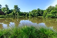France, Loiret (45), Chilleurs-aux-Bois, château et jardins de Chamerolles, l'étang