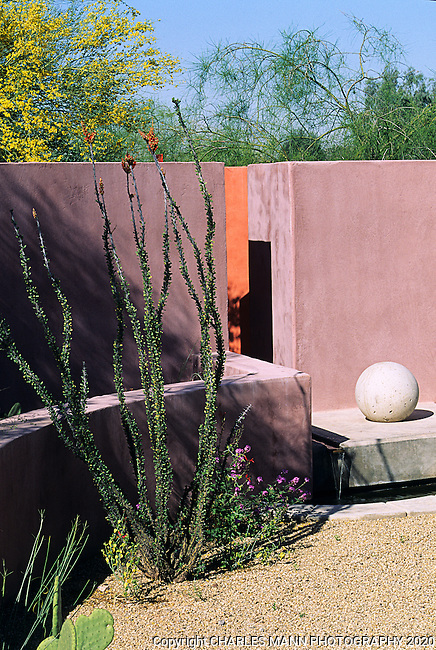 A high pink wall and a curious sphere compliment the snaky stems of an ocotillo and a yellow blooming palo verde tree in the garden designed for Jay Hawkinson by Phoenix landscape architect Steve Martino.