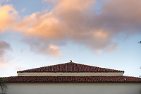 A bird sits on top of Thorne Hall, March 22, 2017.<br />