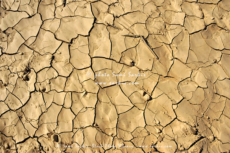 Patterns in dry, cracked soil.