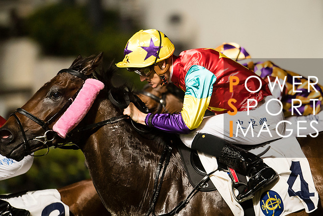 #4 Chad Schofield riding Polymer Luck during race 4 of Hong Kong Racing at Happy Valley Race Course on November 08, 2017 in Hong Kong, China. Photo by Marcio Rodrigo Machado / Power Sport Images