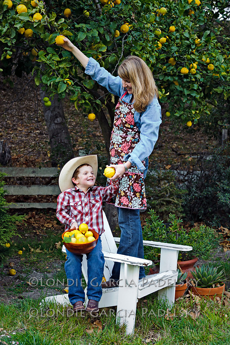 Mother and son picking lemons