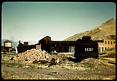 View of Salida yards looking west. D&amp;RGW #1137 standard gauge engine in foreground, turntable and roundhouse, engine house, tank &amp; coaling tower - background.<br /> D&amp;RGW  Salida, CO