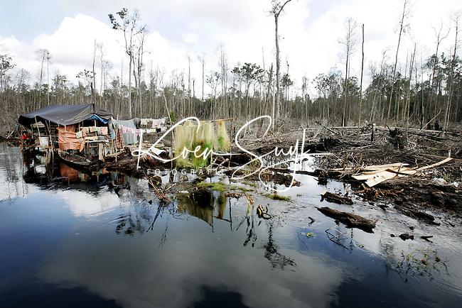 Het jaar 2005 staat voor het Wereld Natuur Fonds (WNF) in het teken van Borneo.Het tropische regenwoud van dit door Indonesie, Maleisie en Brunei gedeelde eiland wordt erstig bedreigd door illegale houtkam en de aanleg van palmolieplantages. Als de verwoesting niet stopt zijn de bossen van Borneo volgens de Wereldbank in 2020 vrijwel geheel verdwenen. Bossen zijn cruciaal voor het voortbestaan van tal van zeldzame planten, bomen, vogels en dieren als de orang-oetan. Een van de eerste stappen is eind 2004 al gezet toen de veenmoerasbossen in Sebangau werden aangewezen als nattionaal park en daarmee een beschermde status kregen. Verwoest bos bij de Sebangarivier. De mensen worden nu geholpen bij herbeplanting