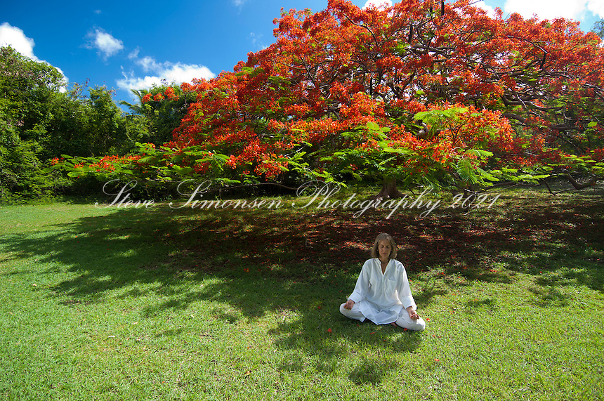 Woman meditating under a flamboyant tree at Caneel Bay Resort<br /> Virgin Islands National Park<br /> St. John, U.S. Virgin Islands