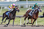 HALLANDALE BEACH, FL - JAN 06: Piven #3 with Jose L. Ortiz in the irons prepares to overtake Aequor #2 on the way to winning The $75,000 Limehouse Stakes for trainer Kevin Attard at Gulfstream Park on January 6, 2018 in Hallandale Beach, Florida. (Photo by Bob Aaron/Eclipse Sportswire/Getty Images)