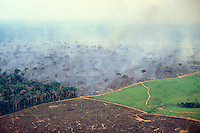 Aerial view of Amazon rainforest deforestation and farm management for livestock. Photo shows four stages in land management on a big cattle farm in the Amazon: In the foreground, naked clear land where the forest has recently been burned and grass will be grown. On the right, a pasture waiting for the cattle. In the background, the forest being burned to make pasture. On the left, native forest, which will soon enough undergo the same.