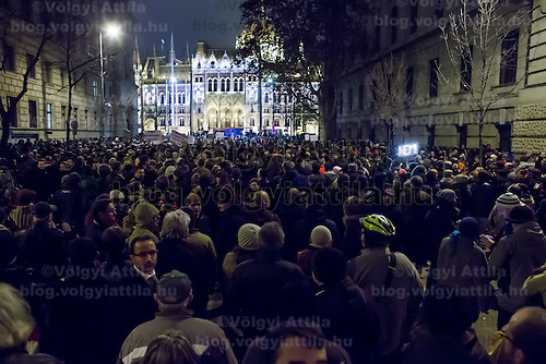 Protest against government annexation of voluntary pension funds in Budapest, Hungary on November 25, 2014. ATTILA VOLGYI