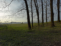 FOREST_LOCATION_90223