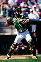 Oakland Athletics 1998
