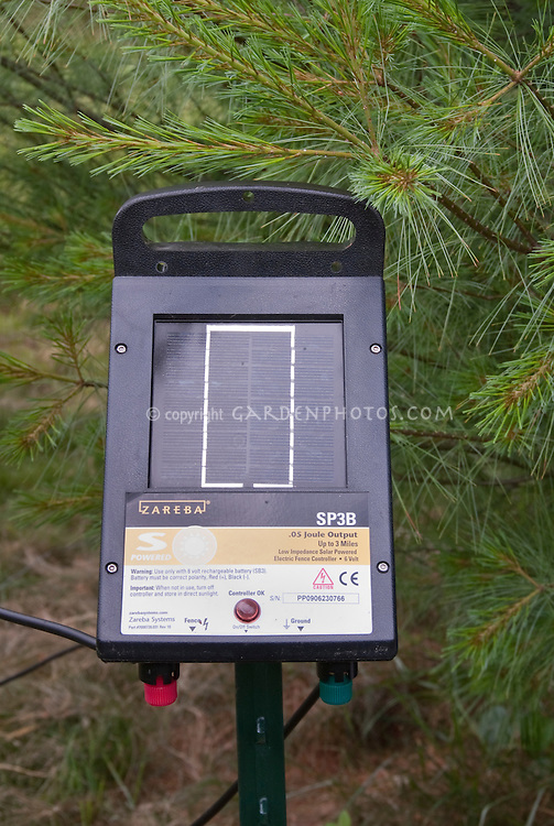 solar panel for electric deer fence next to pine tree for power by solar energy