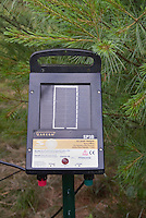 Solar Panel for Electric Deer Fence next to pine tree, for power by solar energy