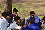 Young Boys Playing Cards