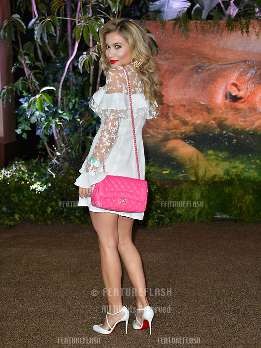 Lola Tash at the Los Angeles premiere of &quot;Jumanji: Welcome To the Jungle&quot; at the TCL Chinese Theatre, Hollywood, USA 11 Dec. 2017<br /> Picture: Paul Smith/Featureflash/SilverHub 0208 004 5359 sales@silverhubmedia.com
