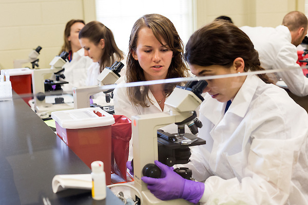 May 7, 2014. Durham, North Carolina.<br />   First year student Yelena Babashova, center, works with a partner as they analyze microorganism samples under a microscope during a GYN lab.<br />  The Duke University School of Medicine Physician Assistant Program is one of the top programs in the country for the training of physician's assistants. PA's are in high demand, and are taking over many of the tasks traditionally done by MD's, so the competition for the program is intense. In the most recent class, there were only 88 spots for a application pool of 1600.