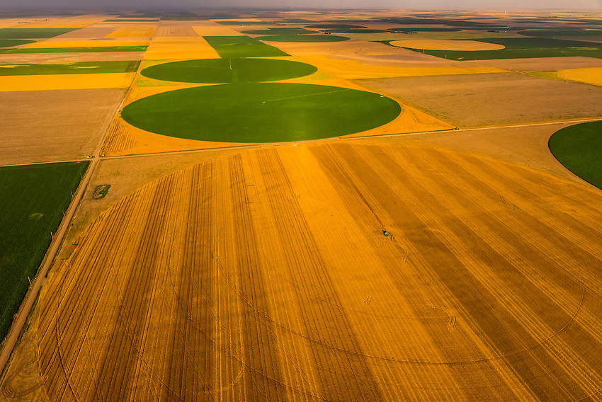Aerial view, wheat and corn fields, Goodland, Kansas USA.