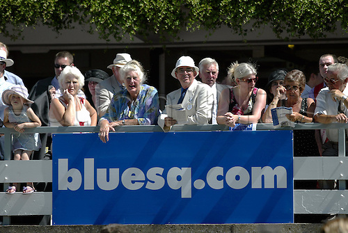 7 August 2004: Racegoers on the balcony overlooking the winner's enclosure The Blue Square Shergar Cup day at Ascot. Photo: Neil Tingle/action plus...horse racing 040807 crowd