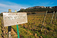 Sun bleached sign in the vineyard saying Grenache Château Barbanau and Clos Val-Bruyere Cassis Cote d'Azur Var France