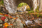 Hadlock Brook flows throughthe Waterfall Bridge in Acadia National Park, Maine, USA