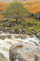 The River Etive in the Scottish Highlands