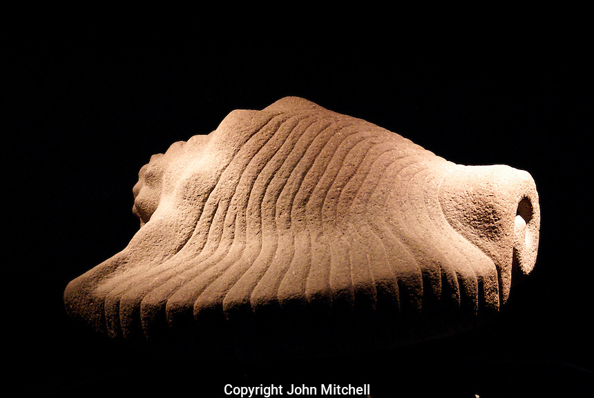 Aztec conch shell sculpure, Museo del Templo Mayor, Mexico City.