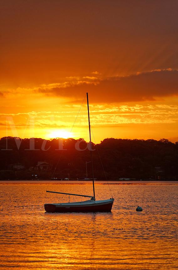 Sunrise sailboat, the Lagoon, West Tisbury, Martha's Vineyard, Massachusetts, USA