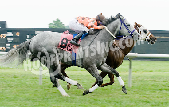 Car Thief winning at Delaware Park on 6/11/11